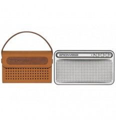 Brionvega Speaker TS 217 WEARiT