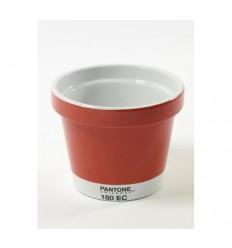 POT MINI MINI VASO PANTONE Shop Online