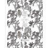 Doodle Art Textures Vol. 1 incl. DVD