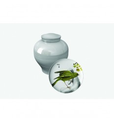 Ibride Vase Parnasse Yuan Grey