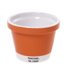 POT LARGE PANTONE Shop Online