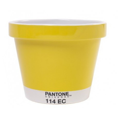 POT XXL PANTONE Shop Online