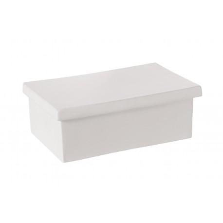 THE BOX SELETTI Shop Online