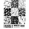 Black & White Matrix Vol. 2 incl. DVD