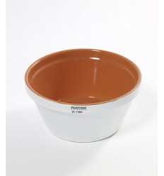 PANTONE SALAD BOWL Shop Online