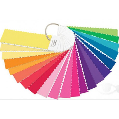 PANTONE NYLON BRIGHTS SET Shop Online