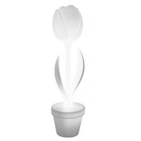 TULIP XL INDOOR LAMP MYYOUR Shop Online