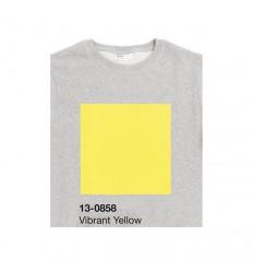 FELPA PANTONE 13-0858 Vibrant Yellow Miglior Prezzo