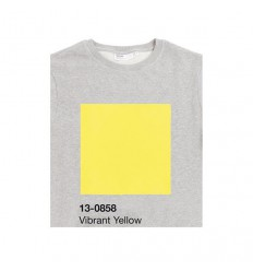 Sweatshirt PANTONE 13-0858 Vibrant Yellow Shop Online